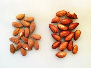 creamy almond mylk